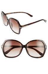 Tom Ford Women's Carola Special Fit 60Mm Sunglasses Havana Gradient Brown Havana Gradient Brown