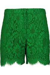 Dolce And Gabbana Guipure Lace Shorts Green