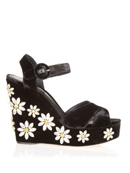 Dolce And Gabbana Daisy Crystal Embellished Velvet Wedges