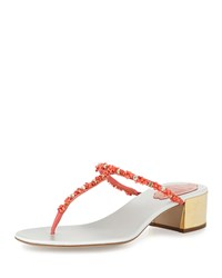 Rene Caovilla Beaded 40Mm Thong Sandal Coral