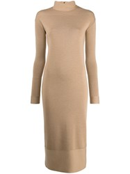 Agnona Fitted Sweater Dress Brown