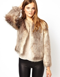 Unreal Fur Stripe Short Jacket Chocolateracoon