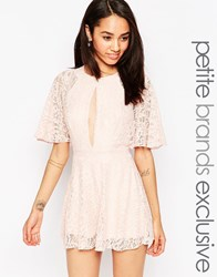 John Zack Petite Lace Playsuit With Keyhole Front Pink