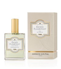 Annick Goutal Men's Ences Flamboyant Edp 100Ml Male
