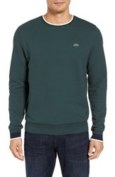 Lacoste Men's 'Semi Fancy' Crewneck T Shirt Kelp Navy Blue Flour