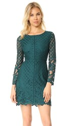 Cupcakes And Cashmere Spence Fitted Lace Dress Forest Green