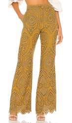 Jens Pirate Booty Jen's Picasso Pants In Mustard. Citrine Mariachi Eyelet