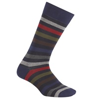 Gant Multi Stripe Socks One Size Blue