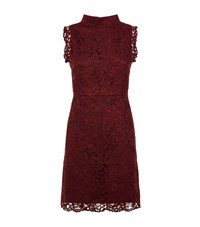 Ted Baker Latoya High Neck Lace Dress Female Burgundy