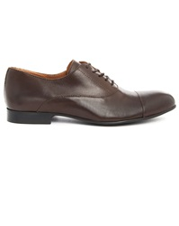 Menlook Label Maple Brown Derby Shoes