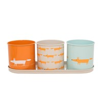 Scion Mr Fox Herb Pot Set Of 3