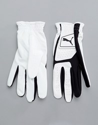 Puma Golf Synthetic Leather Glove In White 4135201 Black