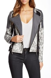Fillmore Faux Leather Snake Print Mixed Media Moto Cross Jacket Gray