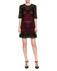 Dolce And Gabbana Elbow Sleeve Lace Shift Dress W Contrast Slip Black Pink Blk Pink