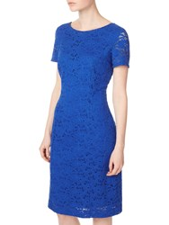 Precis Petite Jessie Lace Shift Dress Blue