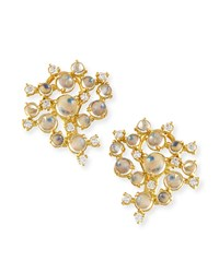Moonstone And White Diamond Bubble Cluster Earrings Paul Morelli