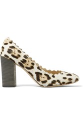 Chloe Scalloped Leopard Print Calf Hair Pumps