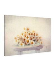 Marmont Hill White Daisies Painting Print On Wrapped Canvas