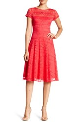 Sangria Lace Dress Petite Red
