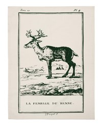 Thomas Paul Reindeer Tea Towel Gray