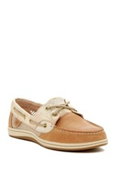 Sperry Koifidh Core Linen Boat Shoe Brown