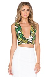Lavish Alice Tropical Crop Top Green