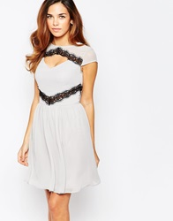 Elise Ryan Skater Dress With Contast Lace Trim Silvergreyblack