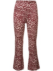 Piamita Printed Cropped Trousers Red