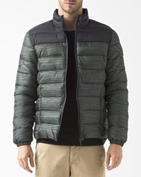 Eleven Paris Black And Green Zebra Down Jacket