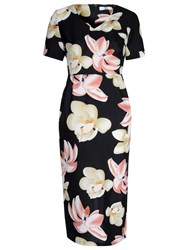 True Decadence Floral Printed Pencil Dress Black Pink