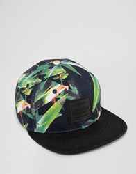Artsac Workshop Snapback Cap With Tropical Print Navy