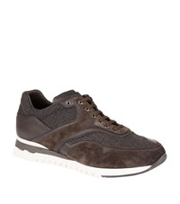 Stefano Ricci Suede Trim Sneakers Male Brown