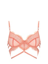 Bluebella Alexandra Lace And Tulle Bra W Underwire Pink