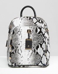 New Look Snake Effect Backpack Mid Grey