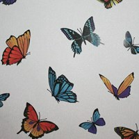 Graham And Brown Flutterby Wallpaper Sample Swatch