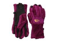 The North Face Denali Thermal Etip Glove Dramatic Plum Dramatic Plum Extreme Cold Weather Gloves Pink