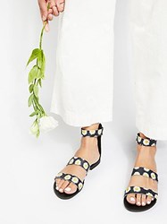 Coconuts By Matisse Sunset Sandal