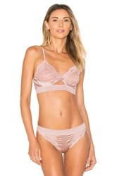 Else Lilly Silk And Lace Triangle Soft Cup Cut Out Bra Rose
