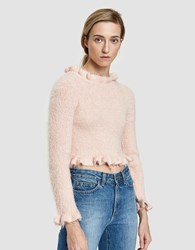 Which We Want Francis Sweater In Blush