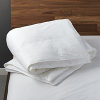 Cb2 Down Alternative King Duvet Insert