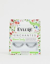 Eylure Enchanted Lashes Bloomin Lovely Black