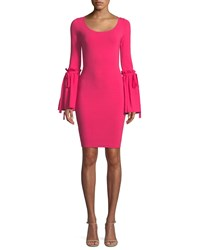 Milly Flare Cuff Long Sleeve Dress Guava