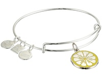 Alex And Ani Charity By Design Zest For Life Ii Charm Bangle Shiny Silver Finish Bracelet