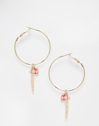 Asos Limited Edition Feather Charm Hoop Earrings Multi
