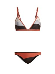 Haight River Sore Print Triangle Bikini Multi