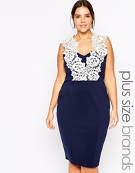 Lipstick Boutique Plus Floral Lace Pencil Dress Navywhite