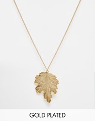 And Mary Gold Plated Necklace With Plated Leaf Charm Gold