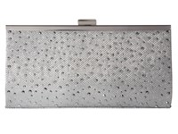 Jessica Mcclintock Laura Lurex With Stones Frame Clutch Platinum Clutch Handbags Silver