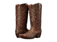 Volatile Viceroy Brown Women's Pull On Boots