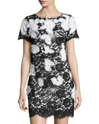 Notte By Marchesa Short Sleeve Lace Shift Dress Black